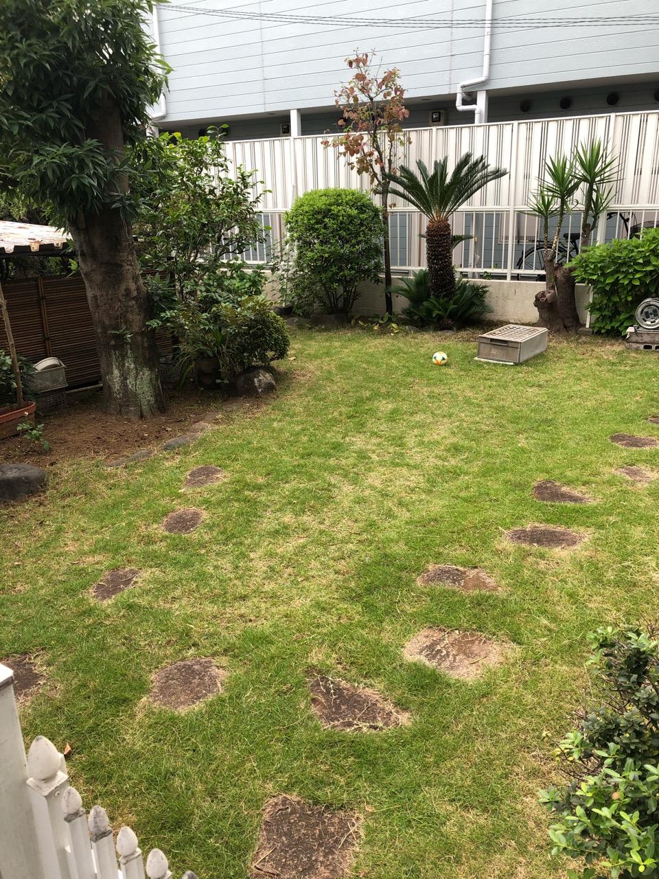 夏に成長し草ボーボーならハンディマンが刈り取ります!