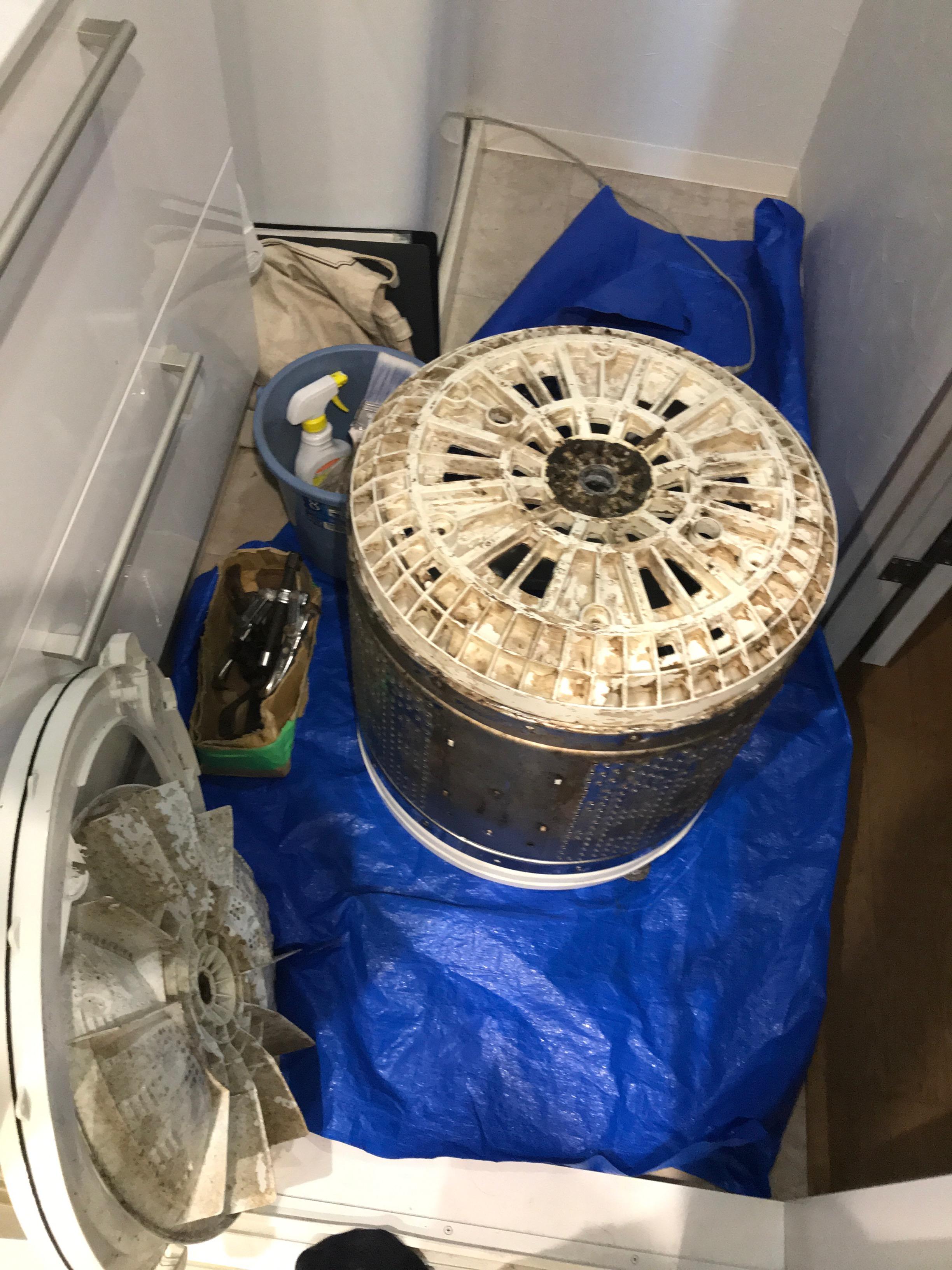 ロハスクラブ会員様人気メンテナンス「洗濯機分解クリーニング」